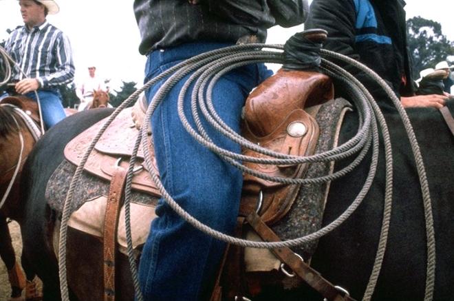rodeo_07w_743x493